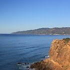 Point Dume - Malibu by Tedd Wenrick