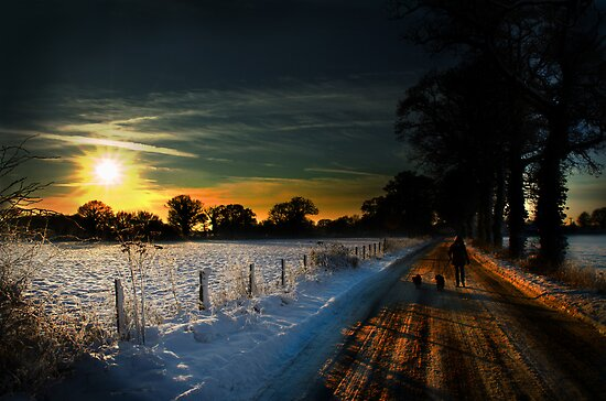 winter scene by simon17