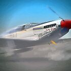 P-51 Mustang by Jerry L. Barrett