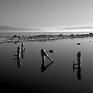 Salton Sea Early Morning  by photosbyflood