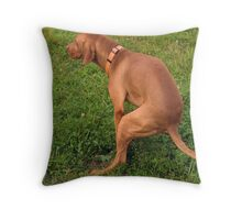 Pooping dog Throw Pillow