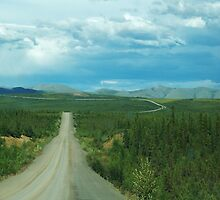 Dempster Highway Canada Arctic by steve kono