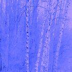 Blue Spring 2 by kahoutek24
