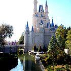 cinderella's castle by Lex Lucera