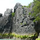 Limestone Stairs by kchase