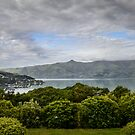 View on Akaroa village New-Zealand by 29Breizh33