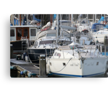 The Recreational Harbor II Metal Print