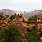 Zion National Park,Utah USA by Anthony & Nancy  Leake