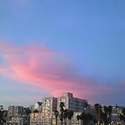 sunset of march 30, 2011 in santa monica, california by Erik Lopez