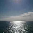 sea of san diego, california by Erik Lopez