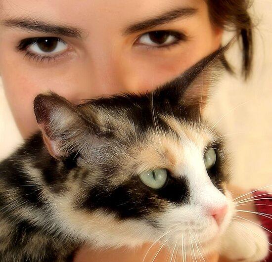 Cat's Eyes by SuddenJim
