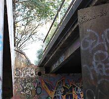 Hidden space - Greystanes (Sydney) 2010 by jackibrown