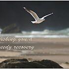 Seagull crossing by Robyn Selem