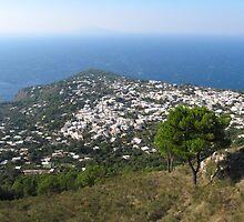 Anacapri Monte Solaro View by kirilart