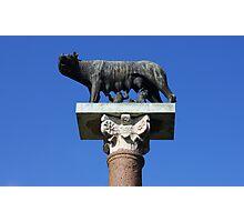 Capitoline Wolf Photographic Print