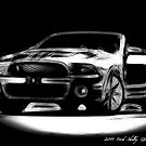 2011 Ford Mustang Shelby GT 500 Convertable by danielisted