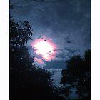 Dark Sky by Louise Harrington