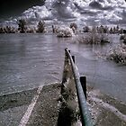 River Guadiana, flooded, Spain by Wendy  Rauw