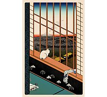 Asakusa Ricefields pixel colour Photographic Print
