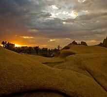 Sunset Joshua Tree Hemingway by photosbyflood