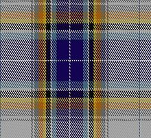 01576 Antarctic Tartan Fabric Print Iphone Case by Detnecs2013