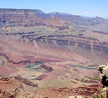Grand Canyon National Park,Arizonia,USA by Anthony & Nancy  Leake