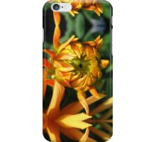 Budding Dahlia No.2 iPhone Case/Skin