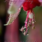 Fuchsia droplets birthday card by Celeste Mookherjee