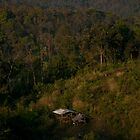 Small hut in the jungle by madebykarl