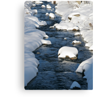 Snowy River view Canvas Print
