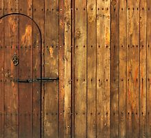 Old Wooden Gate by kirilart