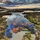 Morning at the rock pool by collpics
