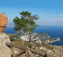 Island Capri view from the highest point Monte Solaro by kirilart