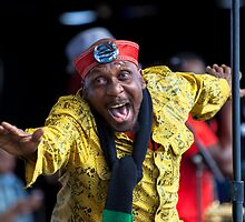 Jimmy Cliff @ Deni Blues & Roots Fest by Natalie Ord