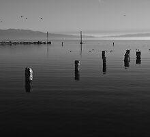 North Shore of Salton Sea Sunrise by photosbyflood
