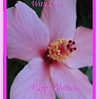 Hibiscus Love Mother's Day Card by judygal