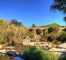 Pont Vell by Tom Gomez