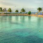 Ocho Rios, Jamaica by Mindy McGregor