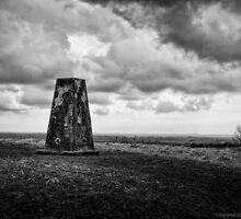 Trig Point by Brian Dukes