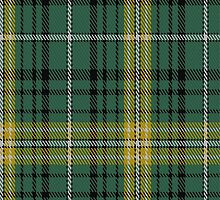 01615 Avalon - Calvert House Tartan Fabric Print Iphone Case by Detnecs2013