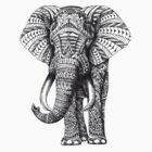Ethnic Elephant by RomanaC
