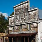 Old General Store by designingjudy