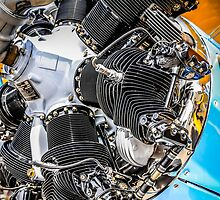 Pratt & Whitney engine on a Stearman by chris-csfotobiz