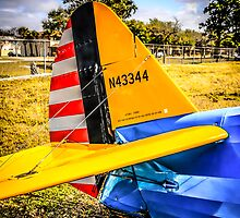 PT17 Stearman tail Unit by chris-csfotobiz
