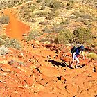 Climbing to the top Kings Canyon Rim Walk by John Vriesekolk