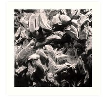 Fingers Of Time - Giant Oyster Shell Fossils Art Print