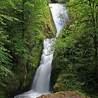 Bridal Veil Falls, Oregon by DArthurBrown