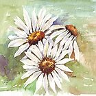 Daisies - the gardener's friend by Maree  Clarkson