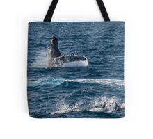 Playful sea mammals Tote Bag