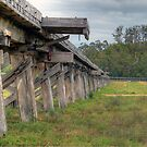 Old Snowy River Bridge. by Julie  White